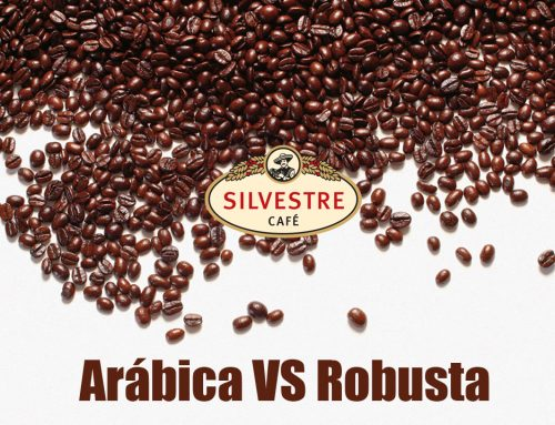 Arábica vs Robusta