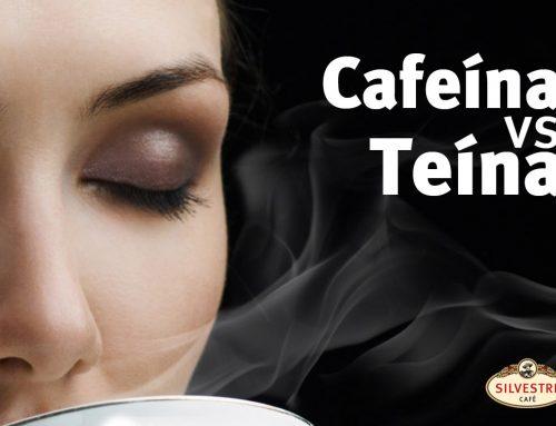 ¿La cafeína y la teína son lo mismo?