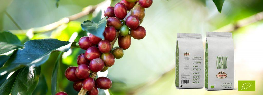 café ecológico u orgánico