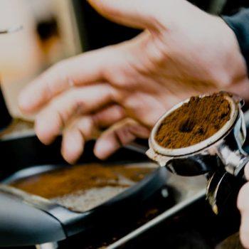 cafe-silvestre-negocio